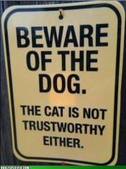 Beware of Dog and Cat