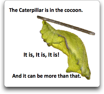 Caterpillar in cocoon more than that words